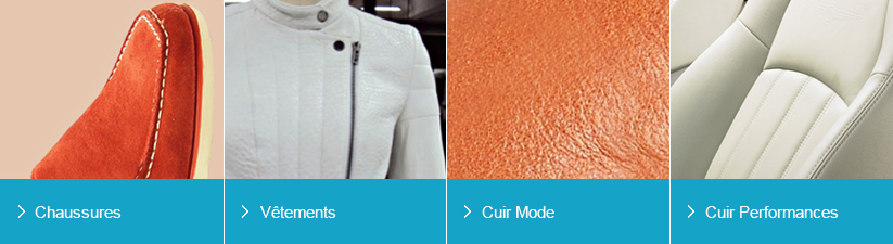 5c294e4ac934 Leather and Leather Products   Tata International
