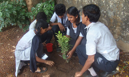 TIL-holds-sapling-plantation-drive-at-municipal-school-500-300