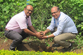 Dewas_team_plants_saplings_Thumb