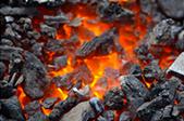 Minerals-team-participates-in-Coaltrans-India-2020_Thumb